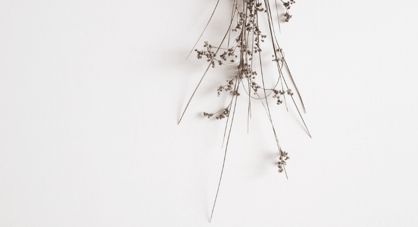 minimalism means