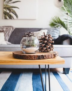 pinecones and a fishbowl on top of a slice of wood